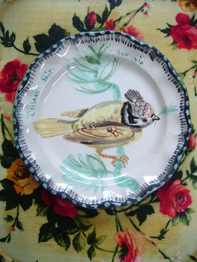 Platebird