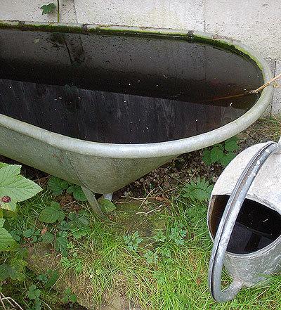 Dunkleswasser2_2